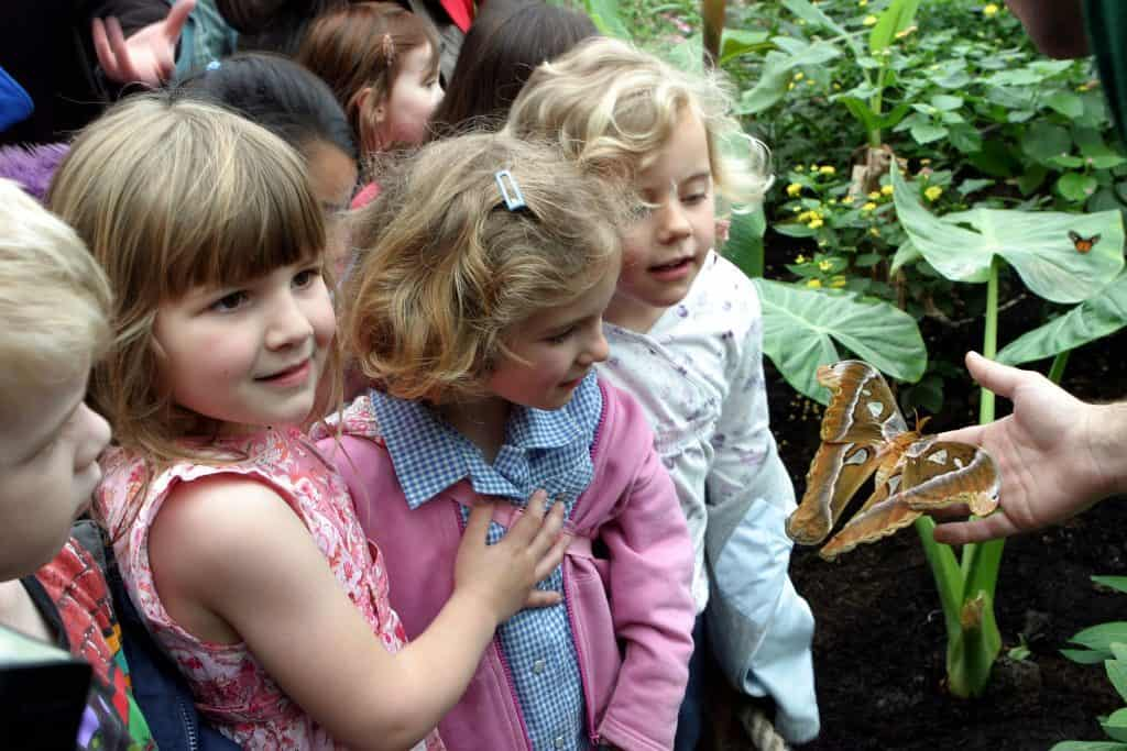 things to see and do at London Zoo