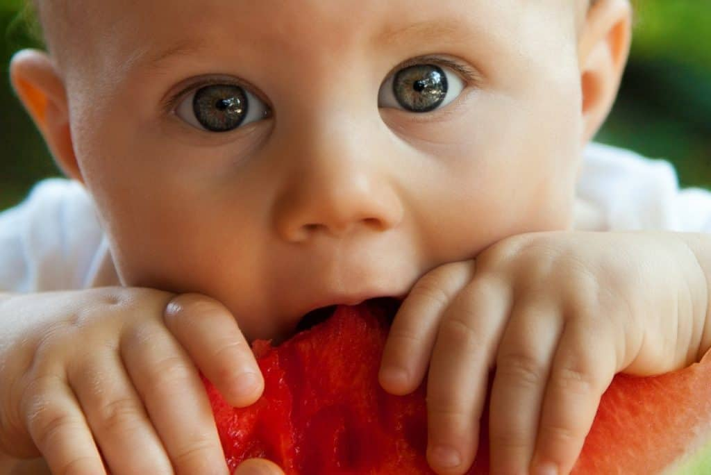 non fussy eaters with baby led weaning