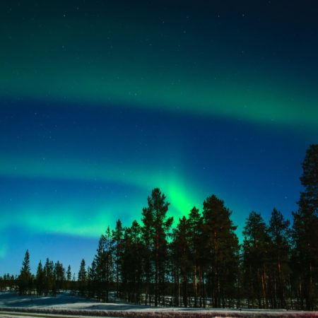 visit Lapland this Winter
